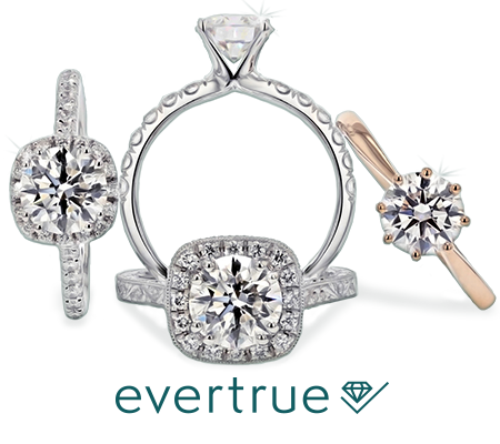 evertrue-collection-image.png